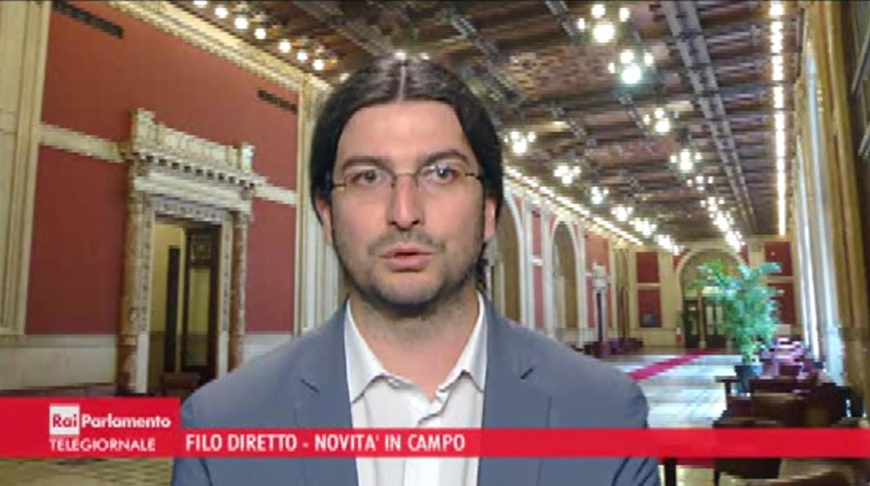 Samuele segoni a rai parlamento in filo diretto for Parlamento rai