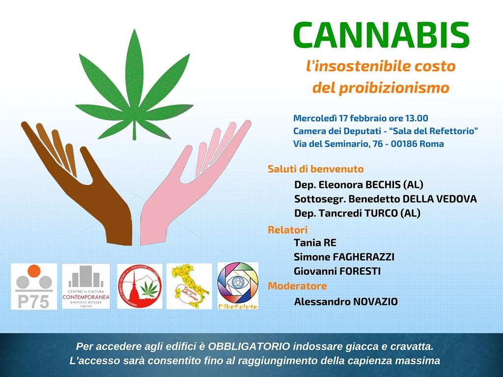Cannabis domani seminario a montecitorio con bechis e turco for Membri camera dei deputati
